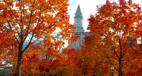 These Are The Best Weekend Road Trips New Yorkers Can Take In The Fall