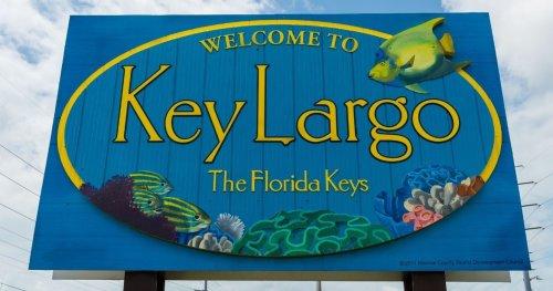 Miami To Key Largo: The Ultimate Florida Day Trip   TheTravel