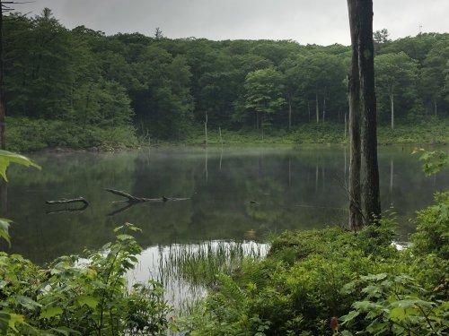Days 79 through 84 on the Appalachian Trail