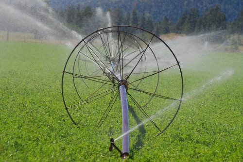 BC's Faltering Effort to Manage Water Use Brings a Looming Crisis (in News)