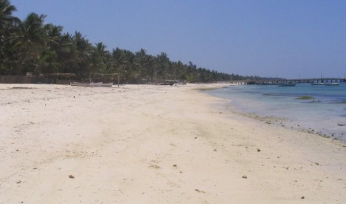 The Developers Are Coming, and Lakshadweep Lives on Borrowed Time - The Wire Science