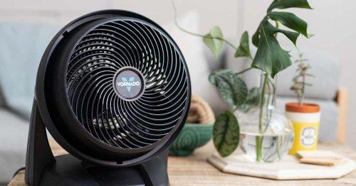 Why We Love the Vornado Air Circulator