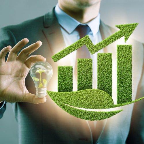 BRN FOCUS | ESG REGULATIONS