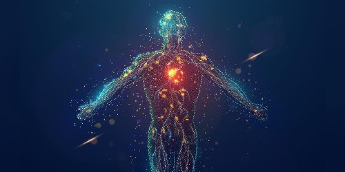 Your immune system and how to boost it