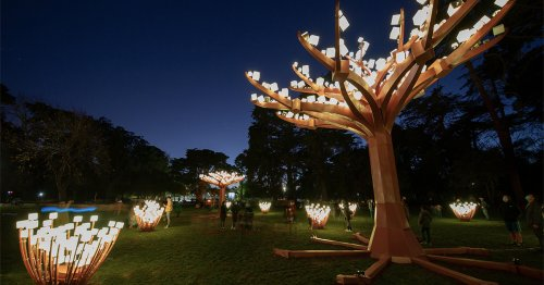 Color-Changing Canopies Glow with LED Lights in a Fantastical Meadow in San Francisco