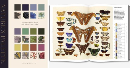Nature's Palette: A New Book Expands the Landmark Guide to Color for Artists and Naturalists with 800 Rich Illustrations