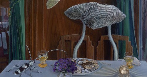 Evoking Dutch Genre Paintings, Intimate Scenes Peer into the Lives of Mushroom Characters