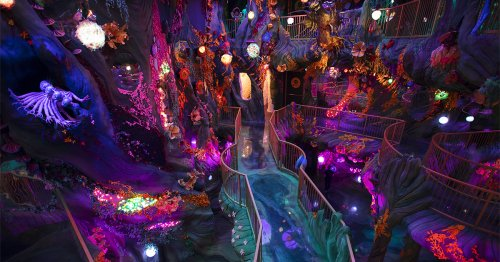 First Look at 'Numina': A Wonderland Brimming with Bizarre Creatures and Fantastical Scenes Opens at 'Convergence Station' in Denver