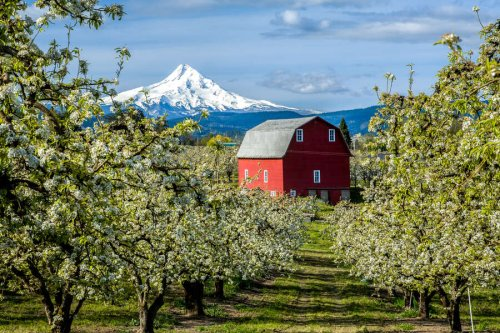 Oregon's Best Small Town Has Mountains, Waterfalls, and Ridiculously Good Beer