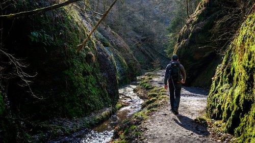 """Thüringen: Schlechte Nachrichten für Wanderer– """"weniger ist mehr"""""""