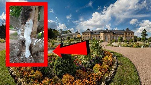 Gotha: Mann geht durch Park – als er DAS sieht, ist er fassungslos!