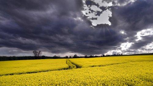 Wetter in Thüringen: Unwetter, Hitze! Chaos am Wochenende