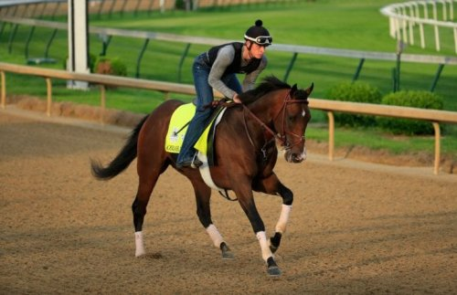 Triple Frown: Derby Favorite Omaha Beach Pulled Because Of Throat Issue