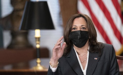 Vice President Kamala Harris' Family in India Is Grappling with COVID