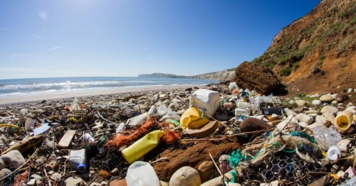 Oceans Will Have More Plastic Than Fish By 2050, Study Says