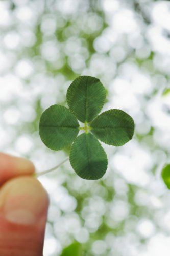 How to Attract Good Luck: 4 Secrets Backed by Research