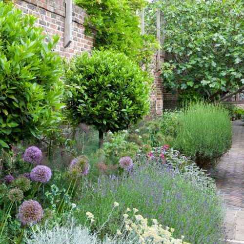 Sustainable gardens – eco friendly ideas for your outdoor space