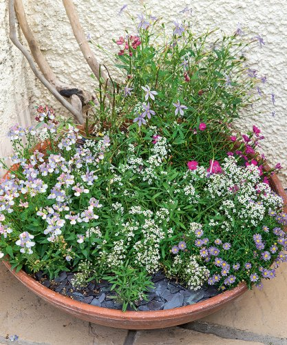 24 free garden ideas – simple ways to improve gardens without spending a penny!