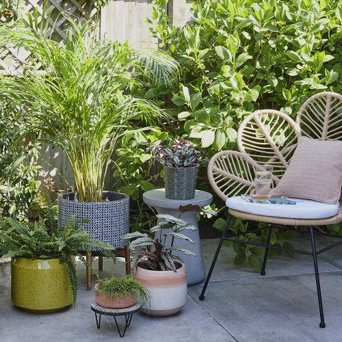 9 simple ways to revamp a rented garden on a budget