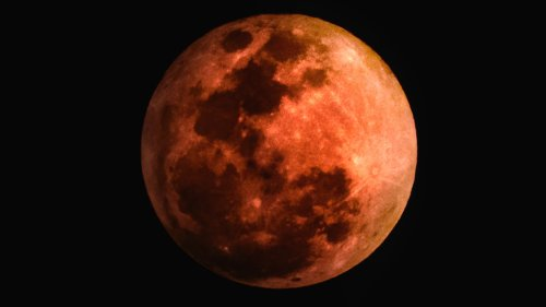 A specially chartered flight guarantees you a view of this month's rare 'super blood wolf moon'