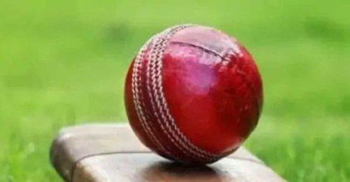 KET vs SUS Dream 11 Prediction Today: Fantasy cricket tips for Kent vs Sussex Vitality Blast T20 match