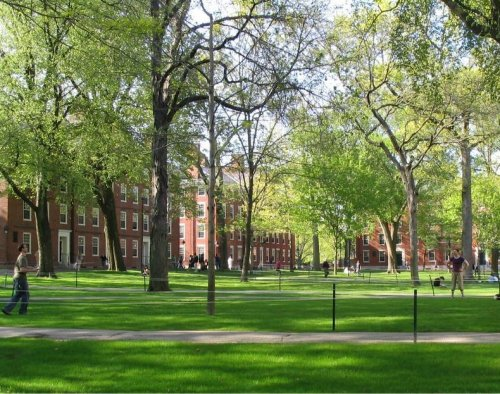 Jewish students at Harvard form BDS-supporting group