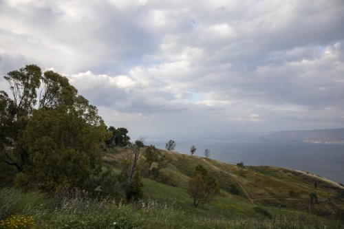 Study finds nature contributes billions to Israel's economy