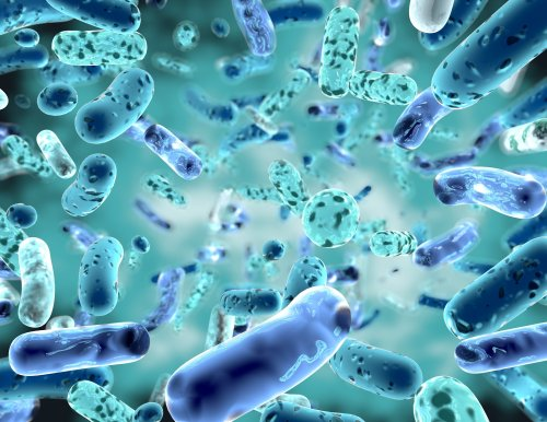 Israeli 'antibacterial weapon' arms good germs to kill bad germs