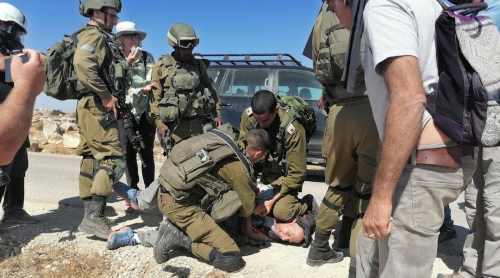 IDF officer reprimanded for injuring, teargassing left-wing activists