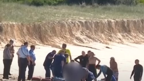 Australian Surfer Dead After Vicious Shark Attack