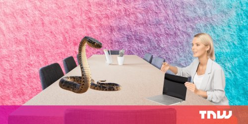Why Python is not the programming language of the future