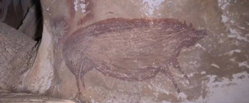 Scoperte in Indonesia le pitture rupestri più antiche del mondo