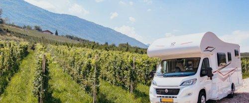 Estate in camper: le Donne del Vino offrono soste gratuite nei vigneti e propongono picnic e visite guidate