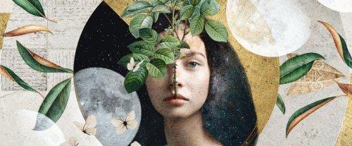 Il Festival della Bellezza 2021 è dedicato a Dante e all'espressione poetica: ecco gli appuntamenti da non perdere