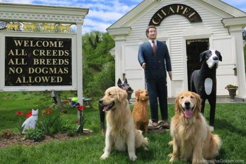 9 Dog Friendly U.S Road trips