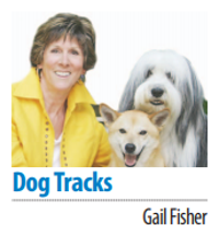 Gail Fisher's Dog Tracks