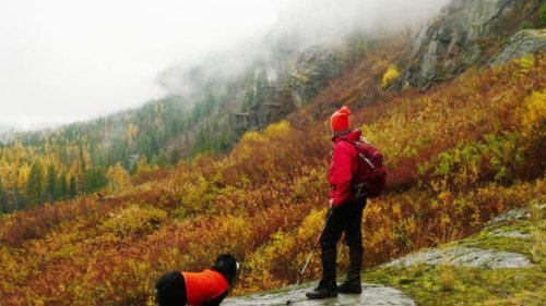 Metrics or politics?: Biden conservation plan raises questions