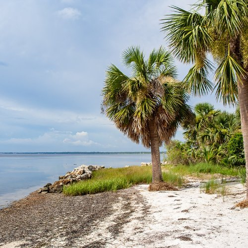 9 Things To Do Near Beautiful Port St. Joe, Florida