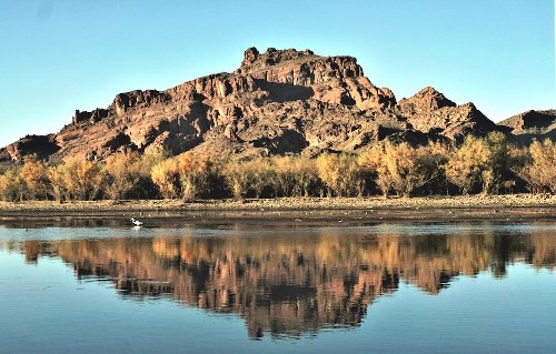 How To Spot The Wild Horses In Salt River Canyon, Arizona