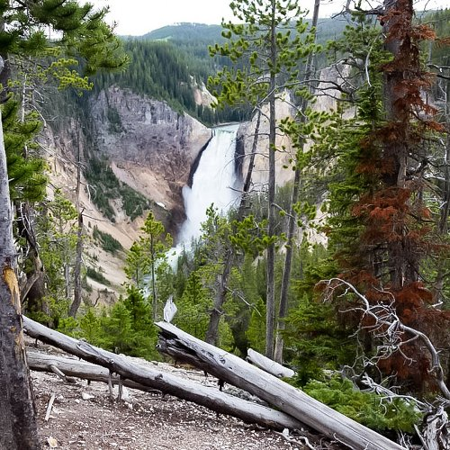 Best Hikes In Yellowstone National Park