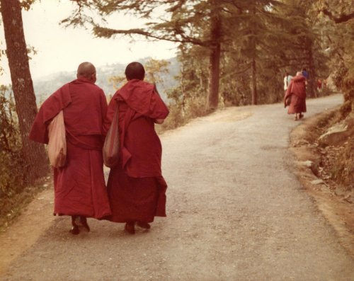 How To Travel Mindfully: Advice From A Tibetan Monk - TravelAwaits