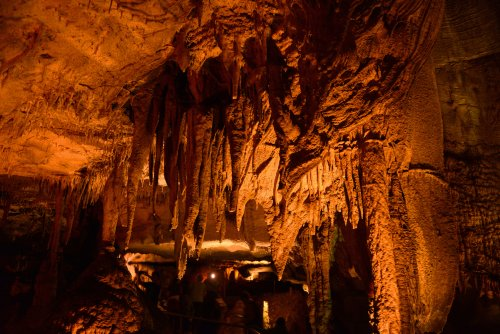 10 Important Ranger Tips For Visiting Mammoth Cave National Park