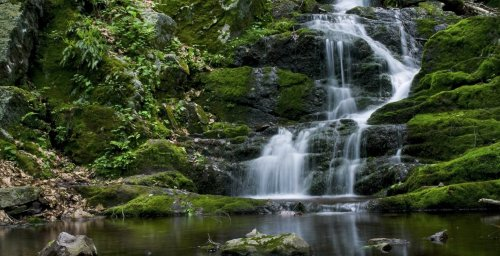 Most Scenic Hikes In The Delaware Water Gap - TravelAwaits