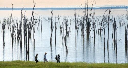 Best Experiences Along Africa's Beautiful Zambezi River