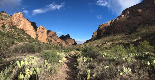 11 Best Hikes In Big Bend National Park - TravelAwaits