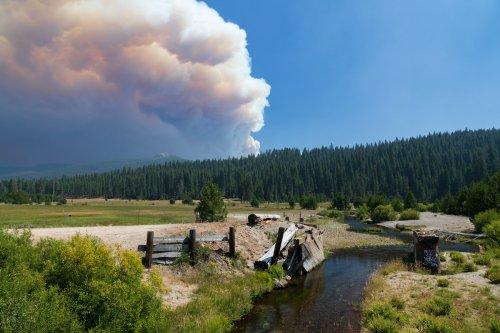 California Fire Destroys Historic Town, Closes National Park
