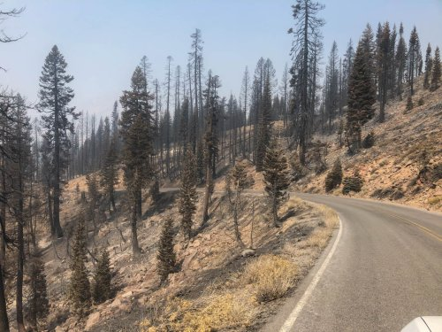 Wildfire Burns Nearly 70% Of California National Park