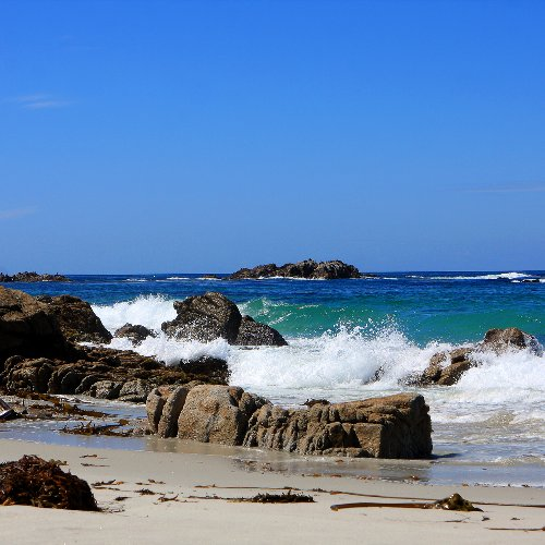 How To Spend A Fantastic Weekend In Beautiful Pacific Grove, CA