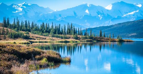 Denali National Park Visitors Can Expect Major Road Closure In 2022