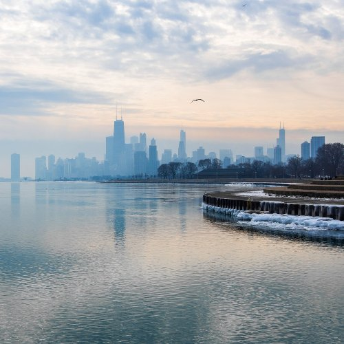 Chicago Bus Driver Jumps Into Lake Michigan 365 Days In A Row - TravelAwaits